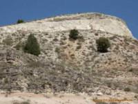 Ribera Del Deuro soil picture 2